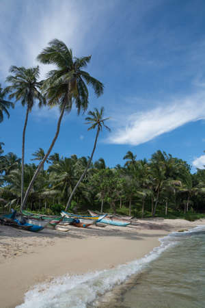 tangalle: Sri Lankan fishing boats on sandy beach with coconut palm trees. Rocky Point, Tangalle, Southern Province, Sri Lanka, Asia.