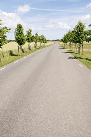 paved: Paved road through rural landscape with corn fields in southern Sweden summertime. Stock Photo