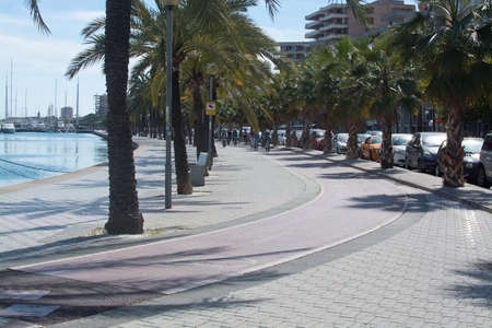 paseo: PALMA DE MALLORCA, SPAIN - APRIL 19, 2015: Bicyclists practice along the Paseo Maritimo, with palm trees on a sunny spring day on April 19, 2015 in Palma de Mallorca, Balearic islands, Spain. Editorial