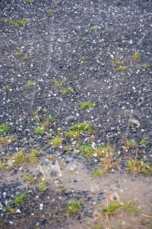 precipitaci�n: ca�da de granizo. Granizo sobre la tierra durante una tormenta el�ctrica cerca de Ostersund en el norte de Suecia, en un d�a de verano. Foto de archivo