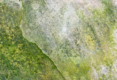 patina: Stone surface with green patina, organic texture background copy space.