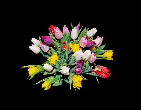 and bouquet: Tulip bouquet con i tulipani colorati isolato su nero.