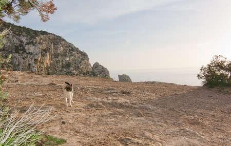 vedra: Magical, mystical Es Vedr island around winter solstice sunset, Ibiza, Balearic islands, Spain Stock Photo