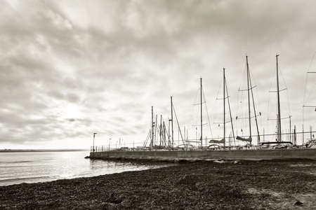 masts: Beach with seagrass and marina with masts in Mallorca, Balearic islands, Spain on a sunny afternoon in December, monochrome sepia. Stock Photo
