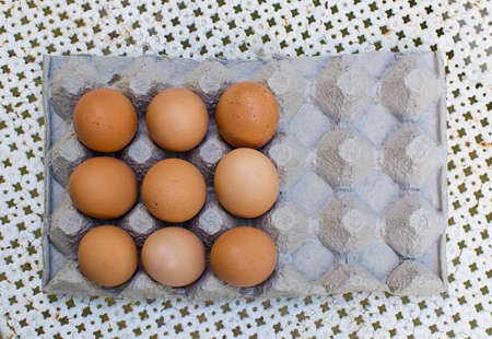 Nine fresh brown eggs in carton from above Stock Photo