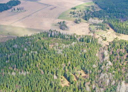 Aerial image of clouds and forest landscape near Stockholm Arlanda airport Sweden in April. Stok Fotoğraf