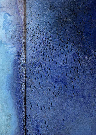 Fish swim in same direction in shallow abstract blue water concrete canal abstract for following, group pressure, dependencies concepts. 写真素材