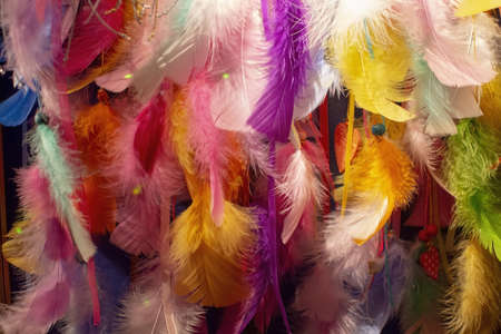 Colorful feather collection closeup in pink, orange, yellow, purple, blue colors background texture Фото со стока
