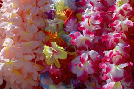 Lei flower garland in many colours closeup background