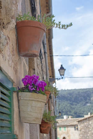 Beautiful terracotta flowerpots with pink cyclamen flowers on stone wall in Valldemossa Mallorca.