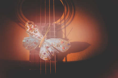Turquoise butterfly on strings of acoustic guitar, concept for poetry, musicality, singer songwriter creativity, toned in Living Coral warm red shades