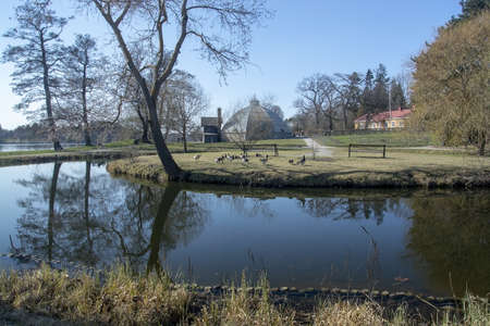STOCKHOLM, SWEDEN - APRIL 20, 2019: Water reflections geese and greenhouse at Bergianska gardens on a sunny day on April 20, 2019 in Stockholm, Sweden.