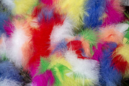 Colored feathers Easter decoration background texture in red blue green yellow white pink