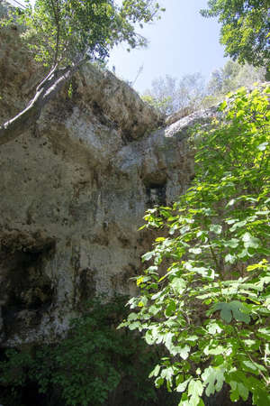 Entrance to caves in high rock with lush vegetation in Mallorca, Spain. 写真素材