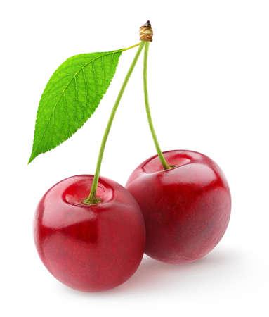 Pair of sweet cherries Archivio Fotografico