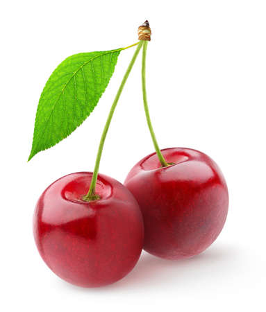 outs: Pair of sweet cherries Stock Photo