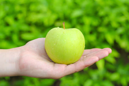 Apple green in the hand