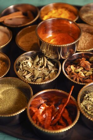 indian spices Stock Photo - 6497284