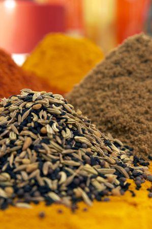 indian spices: indiaanse kruiden