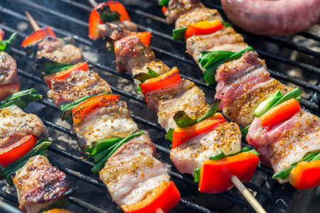 Close up of delicious chicken on wooden skew with fresh vegetables, garlic, paprika fried on mangal barbeque grill and smoke