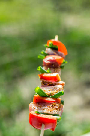 Close up of delicious chicken breast on wooden skew with fresh vegetables, garlic, paprika fried on mangal barbeque grill and smoke