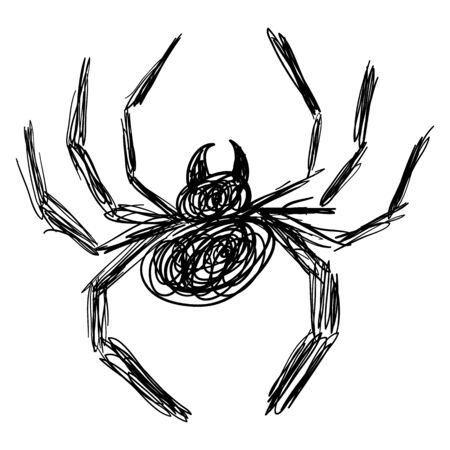 Black Hand Drawn Spider Sketch - Doodle Isolated Illustration