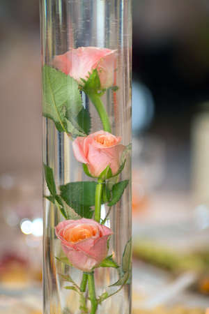 Centrepiece: Wedding reception centerpiece close-up with roses in water