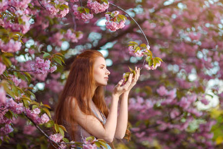 smells: Beautiful pregnant woman smells blossom, outdoor in nature.