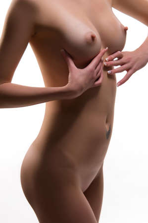 naked young woman: body of a young naked woman on a white background