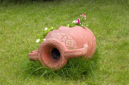 pitcher with the land lies on a bed with plants photo