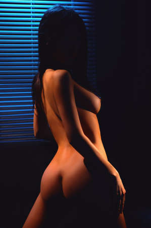 nude young girl stand before venetian blind in dark