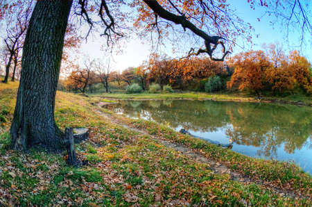 woodland scenery: Autumn coloured trees with reflection in water Stock Photo