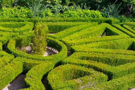 quick hedge: Geometric pattern of green hedge flowerbed, Portugal