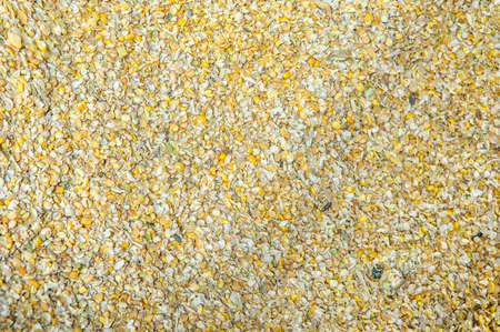 Mixed different grain. Feed for farm animals Stock Photo