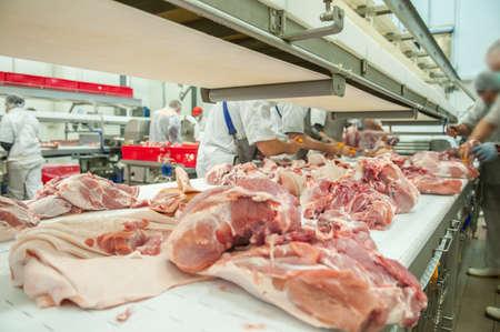 Stretta di lavorazione della carne nell'industria alimentare Archivio Fotografico - 46410473