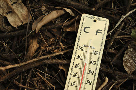 celcius: Hot weather, Thermometer on dry leaves ground, Thermometer in high temperature,  Temperature scale  Stock Photo