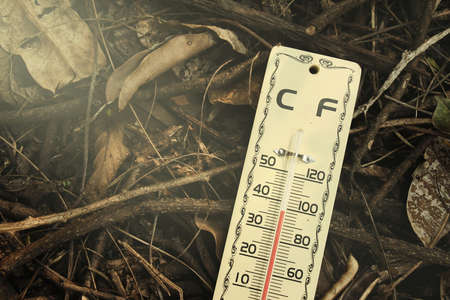 high scale: Hot weather, Thermometer on dry leaves ground, Thermometer in high temperature,  Temperature scale  Process warm lighting  Stock Photo