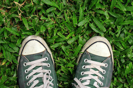 Sport sneakers from an aerial view on grass field, Green, Top view.