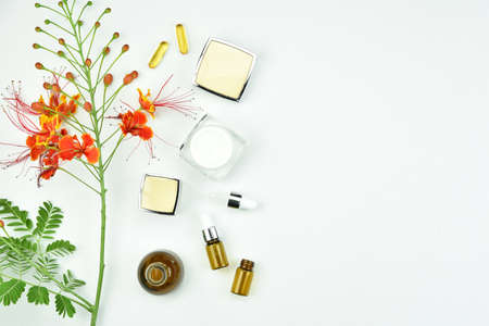 Natural background with copy space for beauty product, Organic beauty cosmetics product concept. Imagens