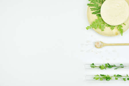 Natural background with copy space for beauty product, Organic beauty cosmetics product concept. Archivio Fotografico
