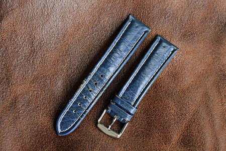 waistband: Strap on a wristwatch, watch strap, watch bracelet.