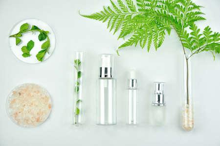 Contenitori per flaconi cosmetici con foglie verdi a base di erbe, pacchetto di etichette vuote per il branding del mock-up, concetto di prodotto di bellezza naturale biologico. Archivio Fotografico - 80907863