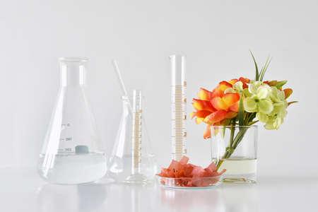 Natural organic and scientific glassware, Alternative herb medicine, Natural skin care beauty products, Research and development concept. Foto de archivo