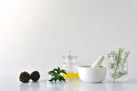 Botánica orgánica natural y cristalería científica, medicina alternativa de la hierba, productos naturales de la belleza del cuidado de la piel, concepto de la investigación y del desarrollo.