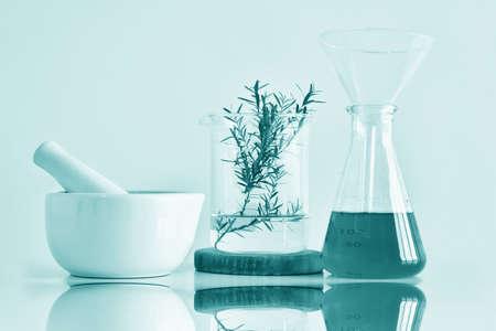 천연 유기 식물학 및 과학 유리, 대체 약초, 자연 스킨 케어 미용 제품, 연구 개발 개념.
