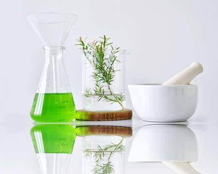 天然有機植物と実験用ガラス器具、代替ハーブ医学、自然のスキンケア美容製品、研究開発のコンセプト。