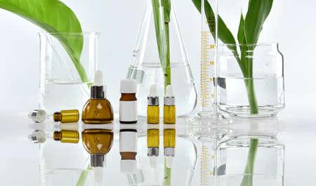 녹색 약초 잎 및 과학 유리, 화장품 브랜드 실물 반입을위한 빈 레이블 패키지 연구 하 고 개발하는 천연 유기농 아름다움 스킨 케어 제품 개념.