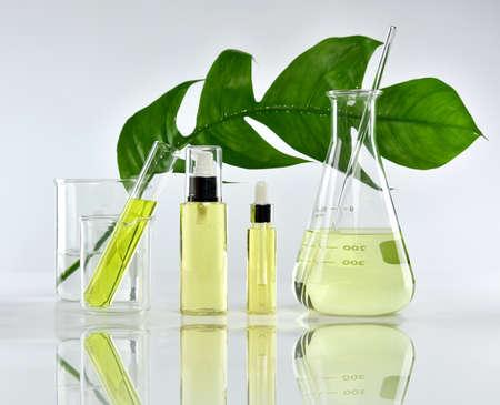 Natuurlijke huidverzorgingsproducten voor schoonheid, natuurlijke organische plantenextractie en wetenschappelijk glaswerk, lege etiket cosmetische container voor branding mock-up. Stockfoto