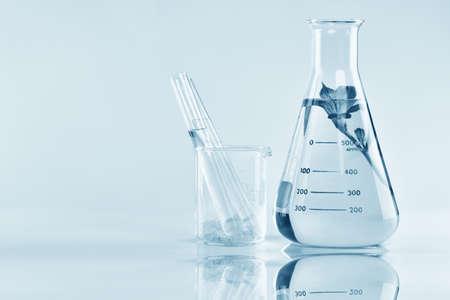 천연 유기 추출 및 녹색 초본 잎, 실험실에서 꽃 향기 에센스 솔루션입니다.