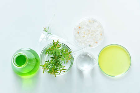 formulate: Natural organic botany and scientific glassware, Alternative herb medicine, Natural skin care cosmetic beauty products, Research and development concept. (Selective Focus) Stock Photo